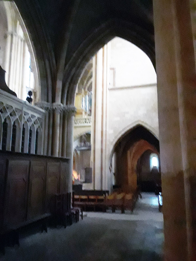 basiliek-interieur